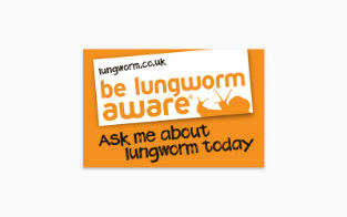 Lungworm