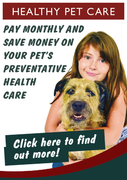 Healthy Pet care